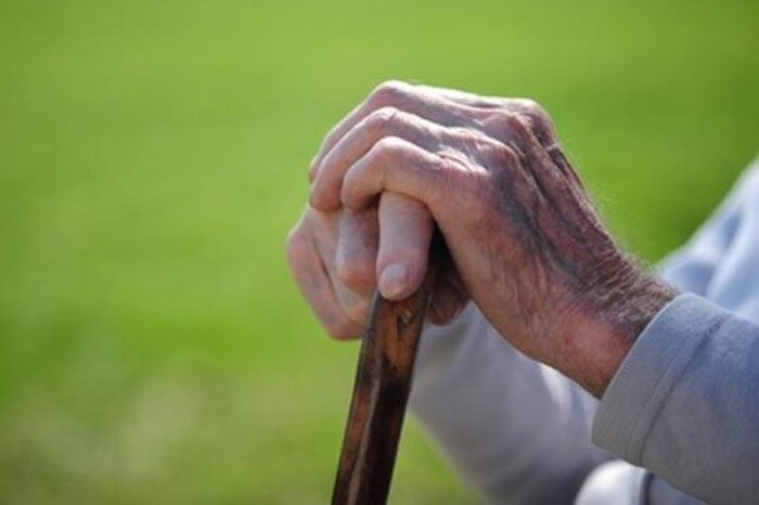 جمعیت سالمند